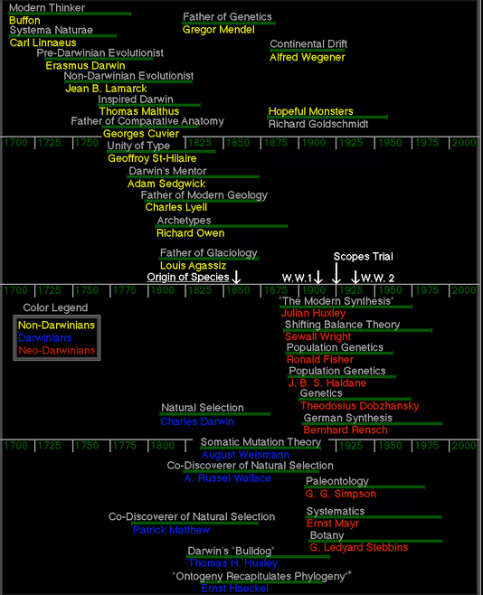 Timeline from UC Berkeley's evolution website. Notice the only geneticist is Mendel.